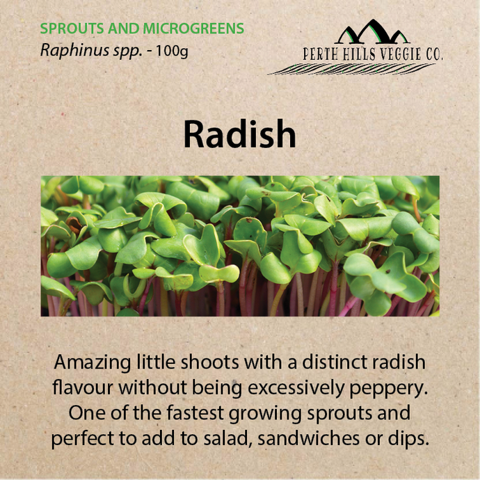 Radish Sprouting Seeds (100 grams)