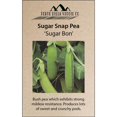 Sugar Snap Pea 'Sugar Bon'