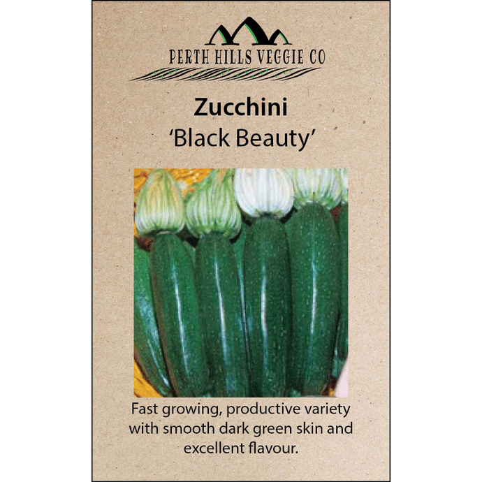 Zucchini 'Black Beauty'