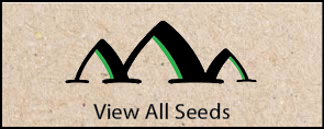 View All Seeds