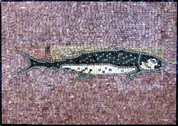 Light Colored Fish Mosaic