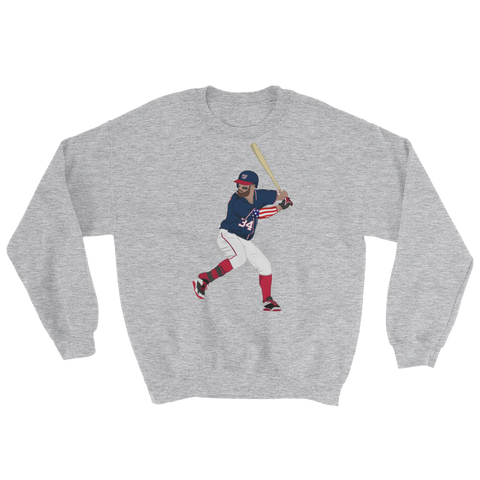 USA 34 Sweatshirt