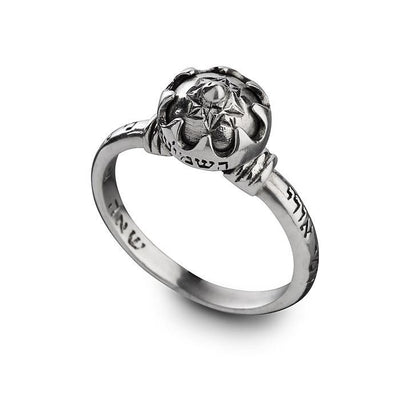 HaShmi'ini Authentic Silver Kabbalah Ring for Protection, Love & Relationship - HA'ARI JEWELRY Hand-crafted Kabbalah & Jewish jewelry