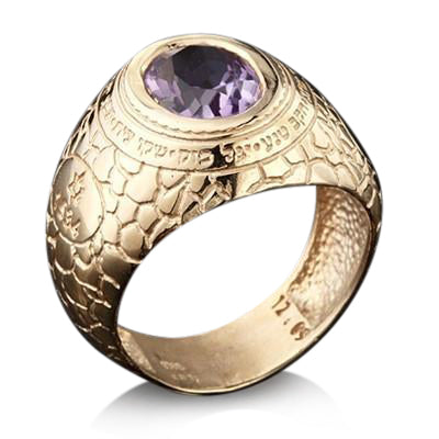 Ana BeKoach Gold Kabbalah Ring for Men by HaAri - HA'ARI JEWELRY