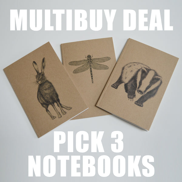 Value pack - choose any 3 eco-friendly A6 notebooks
