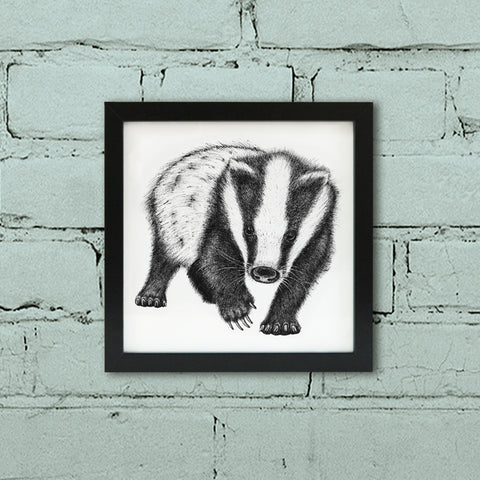 Black and white Badger illustration