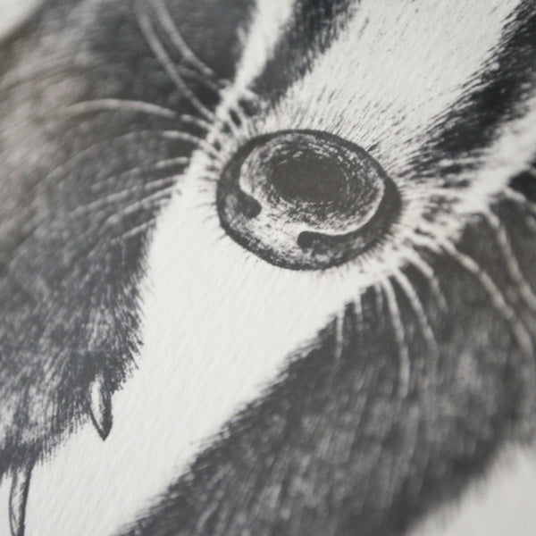 Badger art print.
