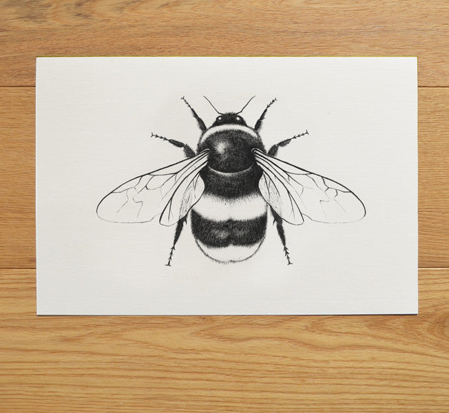 Bumble bee art illustration