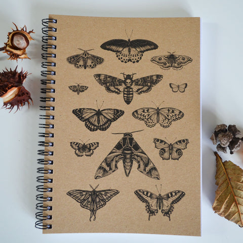 Moth & Butterfly Art - A5 Ethical Journal