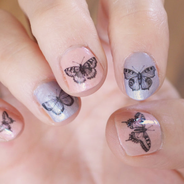 Set of 16 Butterfly nail decal transfers.