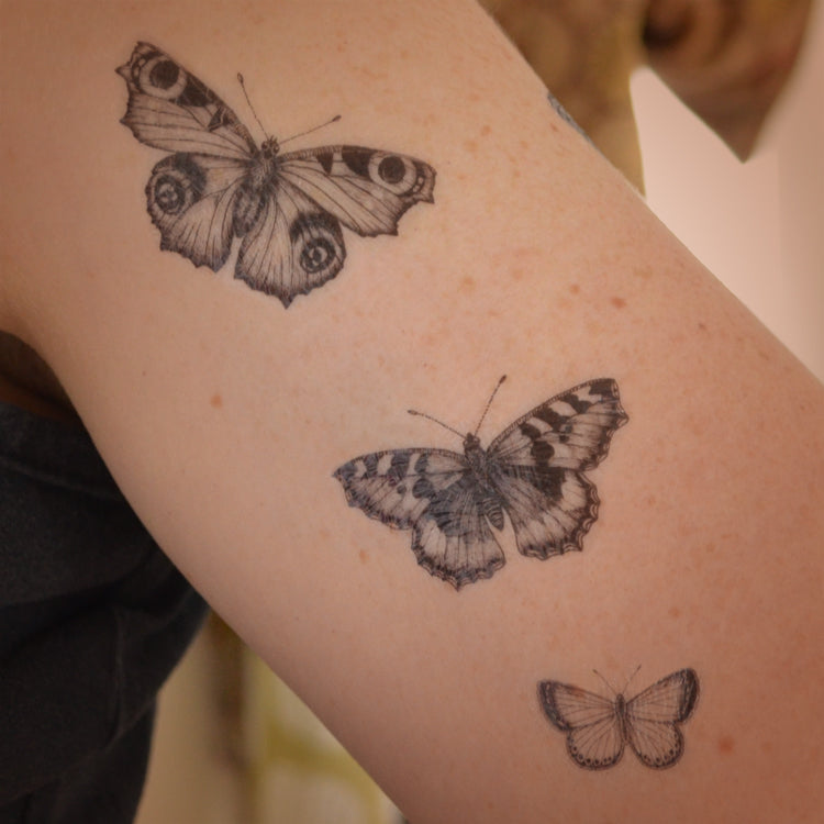 Peacock, Tortoiseshell and Small Blue - butterfly temporary tattoo set