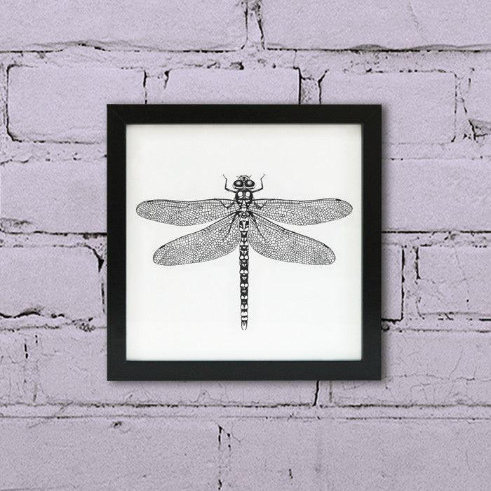 Ink Dragonfly wall art