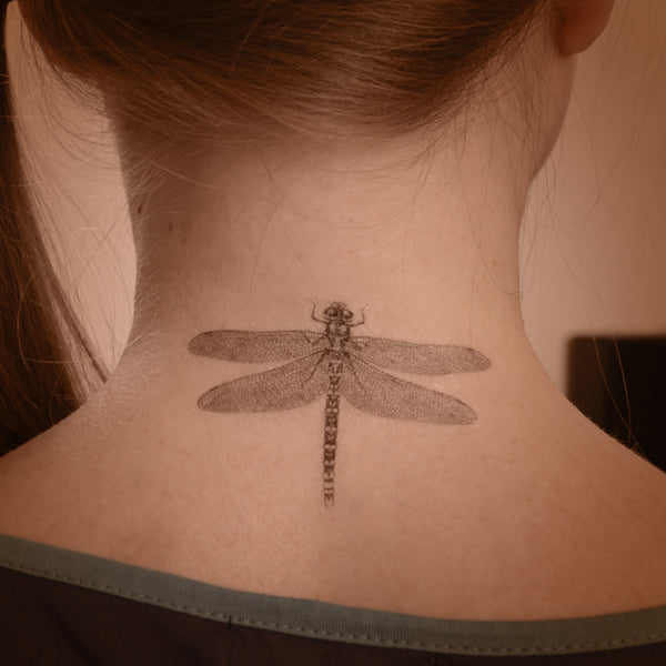 Dragonfly temporary tattoo