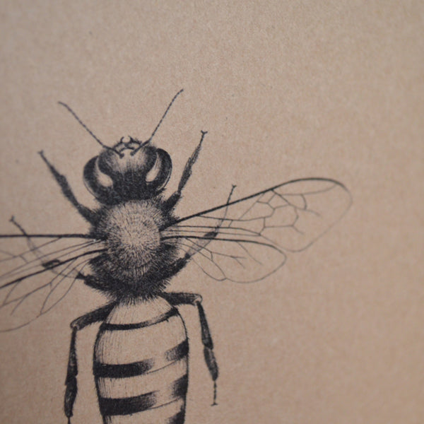Honey Bee Recycled Greetings Card