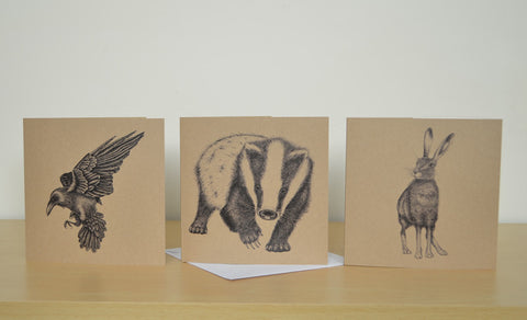 Mix and match 6 illustrated greetings cards.