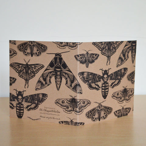 Moth collection - recycled greetings card.