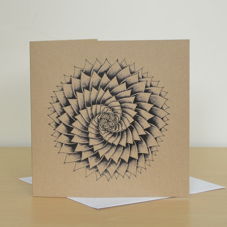 Succulent spiral greetings card.
