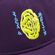 Space Time Cap Purple - Tealer