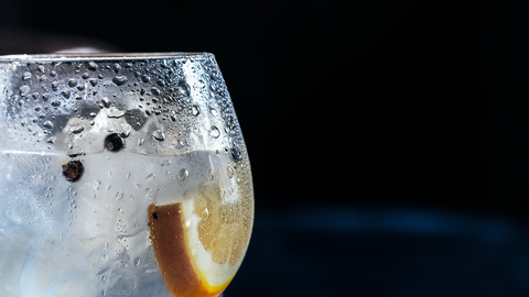 clear glass with gin, ice, an orange slice, and juniper berries