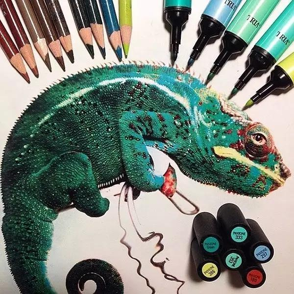 Combination of color pencils and markers, Draw a lifelike piece!