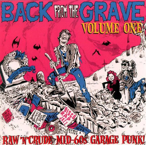 Back From The Grave Vol 1 - Rockin 1996 Punkers