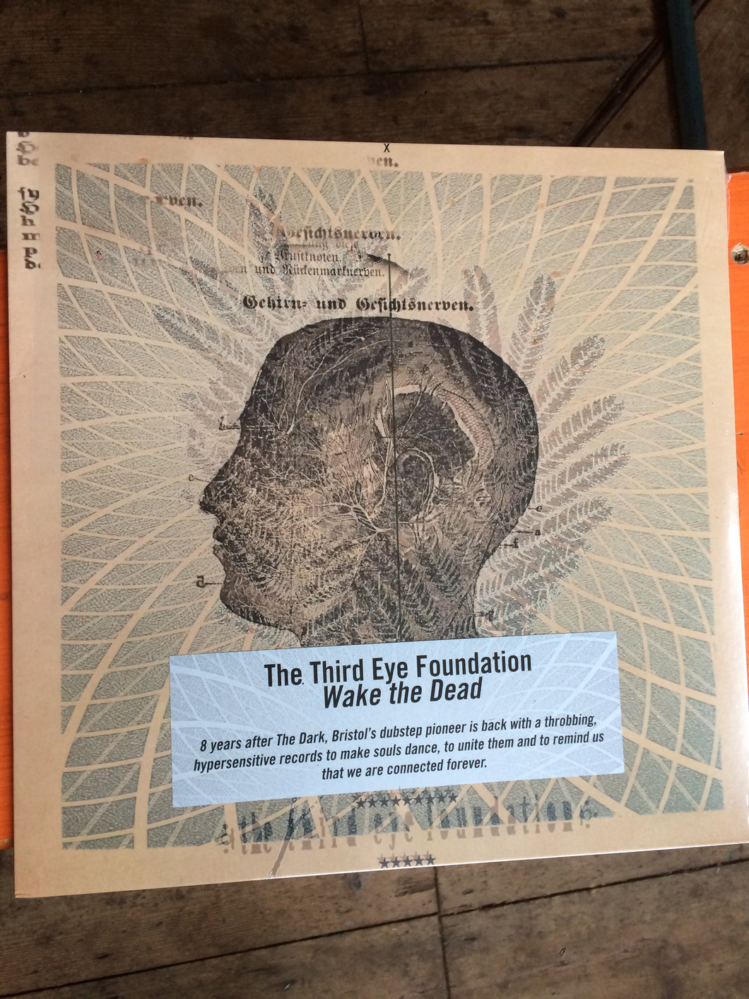 The Third Eye Foundation - Wake The Dead