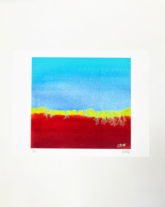 Chelstin Ross Print - Red/Blue