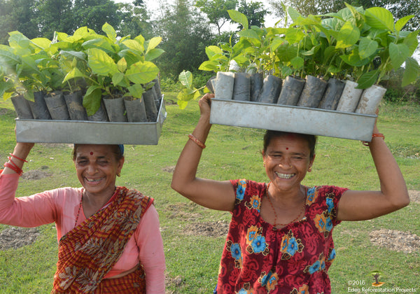 Women planting trees in Nepal