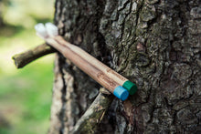 Two BAMWOO bamboo toothbrushes on a tree branch
