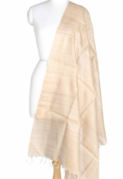 Natural color Tussar Raw silk Solid woven dupatta (1) Main