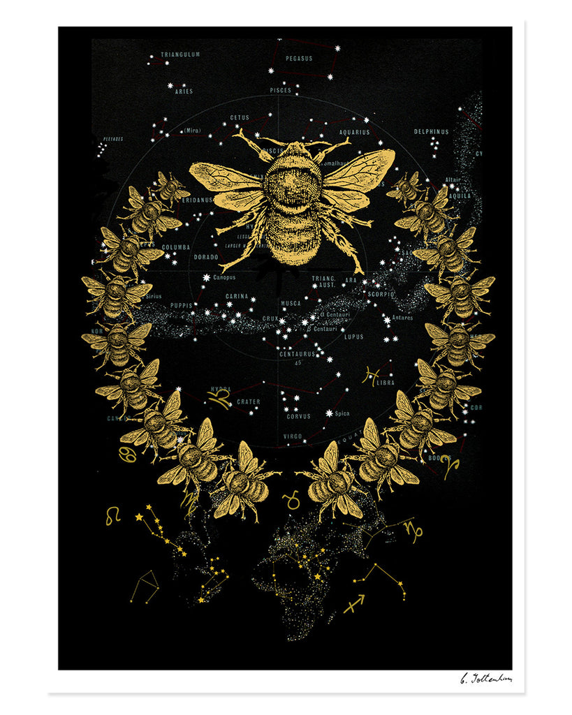 Bee Laurel Galaxy | Giclée print