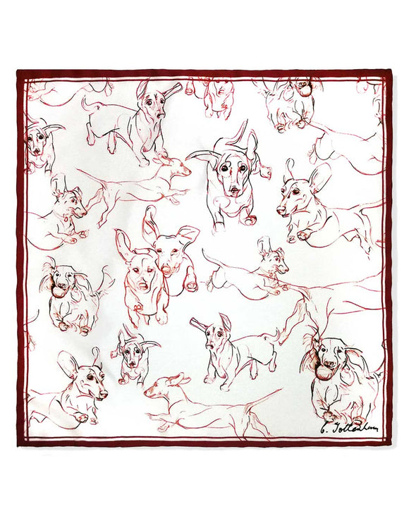 Perfect Pocket Square chocolate Dachshund silk set