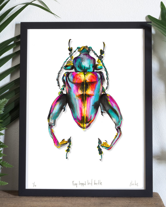 Frog-Legged Leaf Beetle | A3 Signed EDT/10