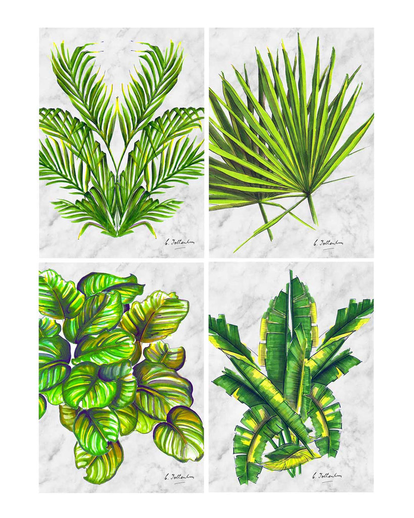 Palm Love Illustrated Palm leaf greetings card set