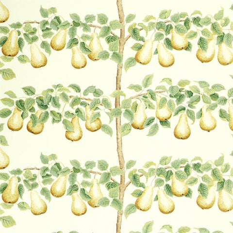 sanderson fabric national trust pears