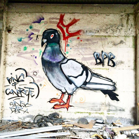 Bipolar bear wear painting of pigeon in graffiti