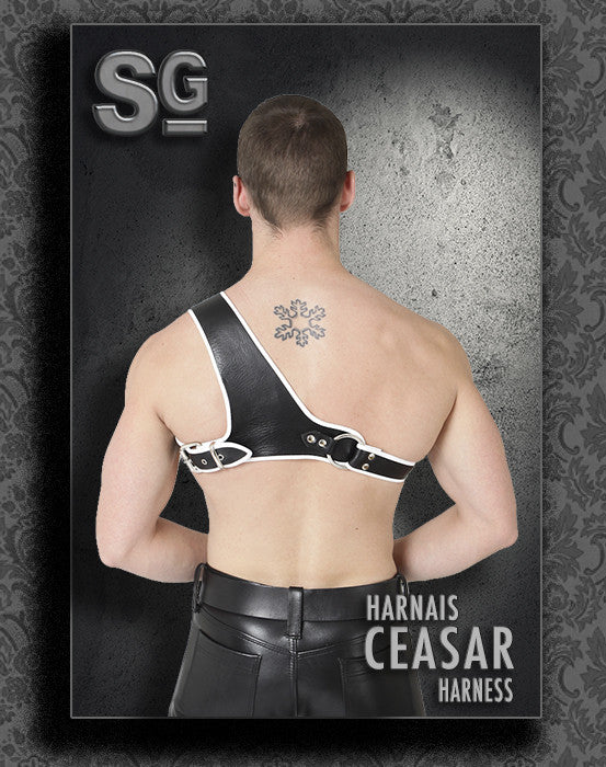 ''CEASAR'' harness