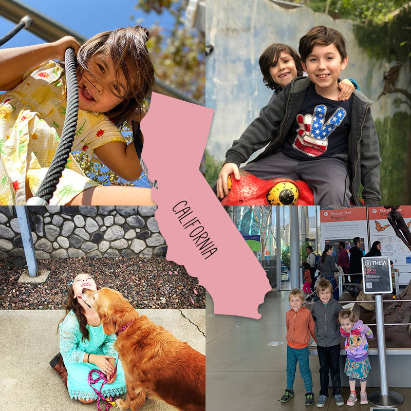Meet 4 Families from California />       <header role=