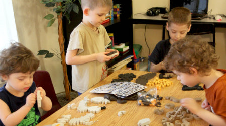Timberdoodle Review - Bloco Construction Sets - Birds of Prey by The Organized Chaos