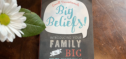 Big Beliefs Review by Flanders Family Homelife