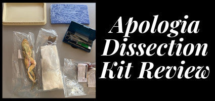 Dissection Kit Review by Cummins Life