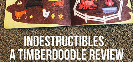 Indestructibles Review by A Youth Pastor's Wife