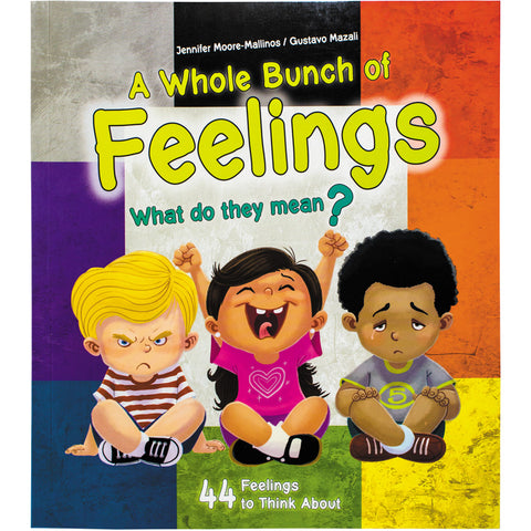 A Whole Bunch of Feelings, a book for toddlers about feelings.