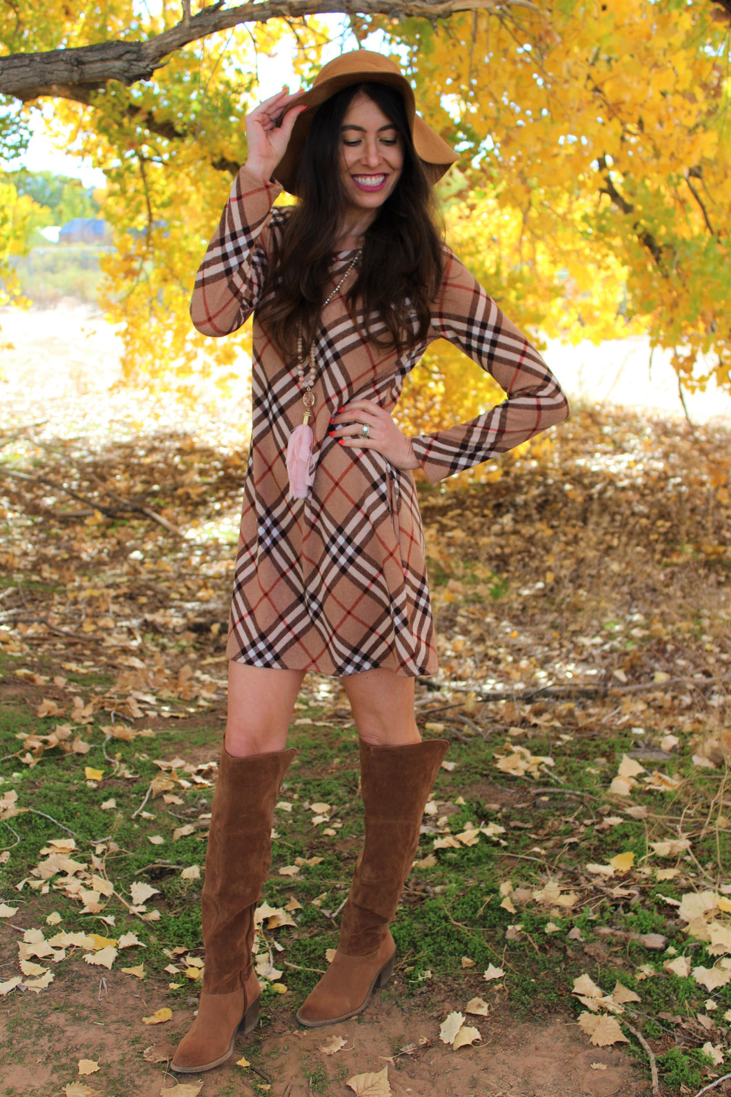 Maggie Plaid Long Sleeve Dress