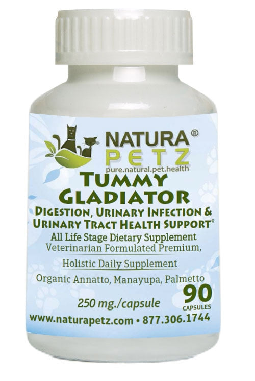 Tummy Gladiator - Digestion, Urinary Infection and Urinary Tract Health Support