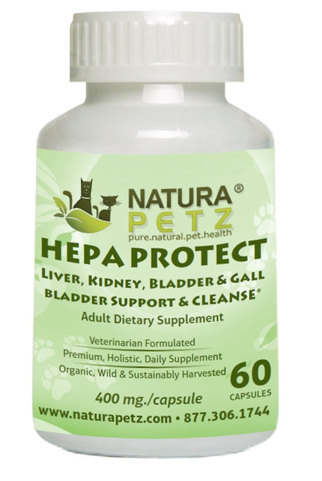 Hepa Protect Capsules - Liver, Kidney, Bladder & Gall Bladder Support & Cleanse*