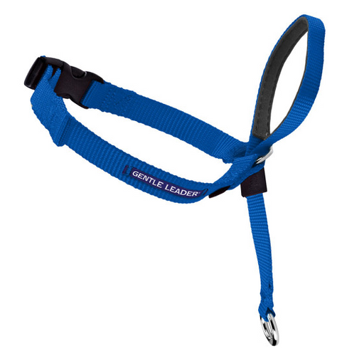 Petsafe Gentle Leader Quick Release Royal Blue Headcollar for Dogs