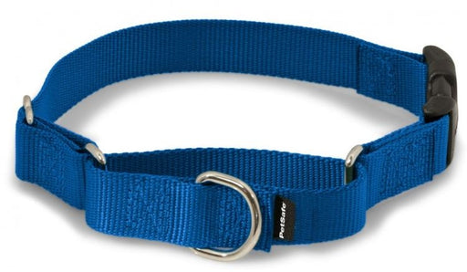 PetSafe Premier Martingale Royal Blue Quick Snap Pet Collar