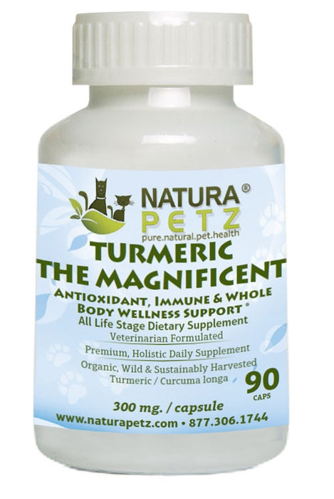 Turmeric the Magnificent - Antioxidant, Immune and Whole Body Wellness Support