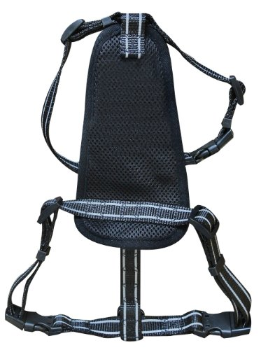 Alcott Essentials Adventure Harness